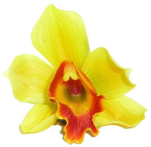 Orchidee Hibiskus Blüte Hawaii rockabilly Haarspange gelb