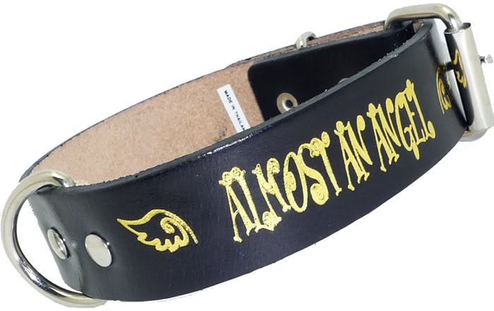 Almost an Angel- Leder Halsband Engel Hundehalsband