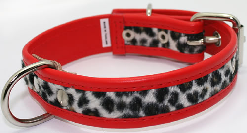 LEO Leoparden punk rock rockabilly Hundehalsband