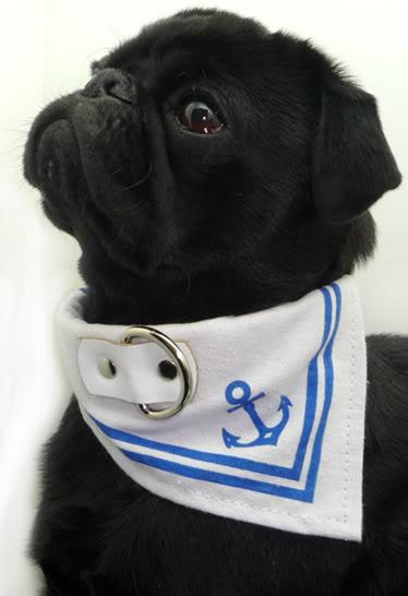 Sailor Kragen Tuch Matrose Anker Hundehalsband