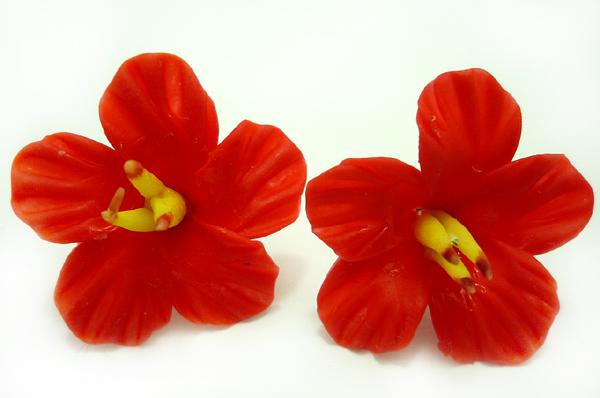 HAWAII Flower Hibiskus Blüten rockabilly pin up Blumen Ohrringe Ohrstecker ROT